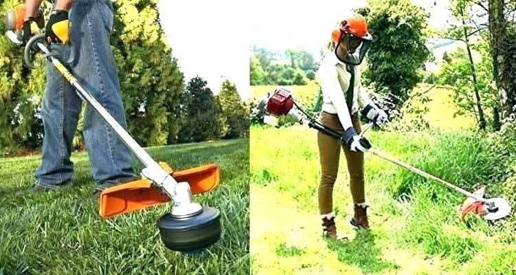 Tревник со нормална, ситна трева или со погруба и погуста вегетација.